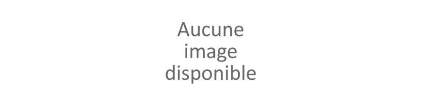 KIT SATELLITE POUR CAMPING AVEC RECEPTEUR 12V